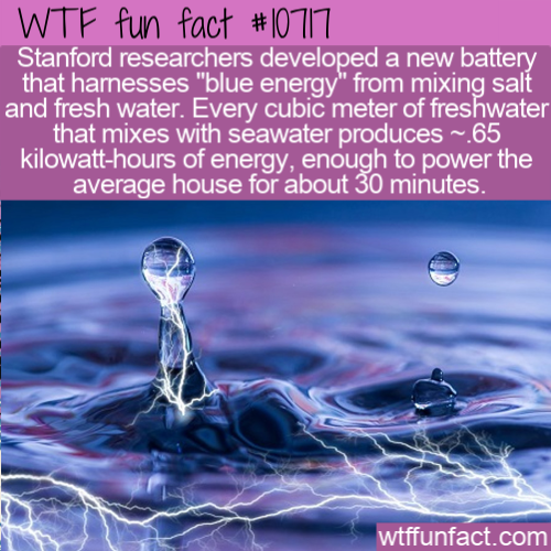 WTF Fun Fact - Blue Energy