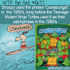 WTF Fun Fact – Cowabunga!