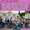 WTF Fun Fact – Disable Disability Priority Line