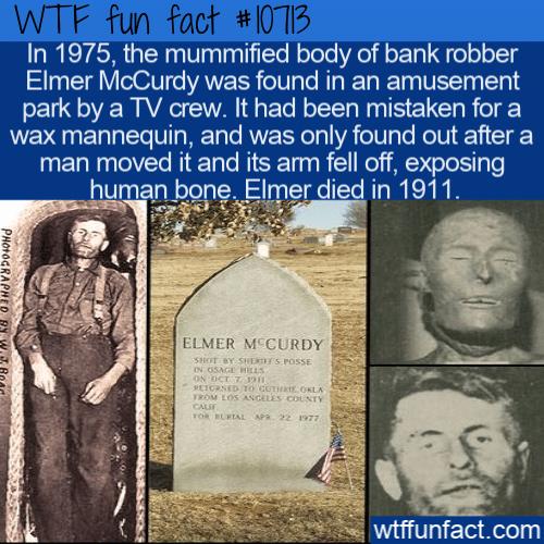 WTF Fun Fact - Elmer McCurdy