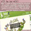 WTF Fun Fact – Games For Science