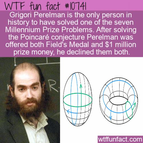 WTF Fun Fact - Grigori Perelman