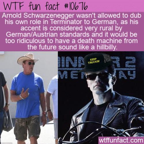 WTF Fun Fact - Hillbilly Terminator
