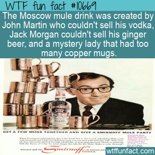 WTF Fun Fact - Moscow Mule