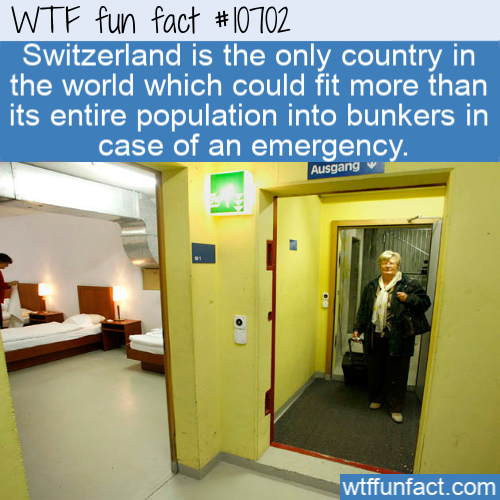 WTF Fun Fact - Swiss Bunkers