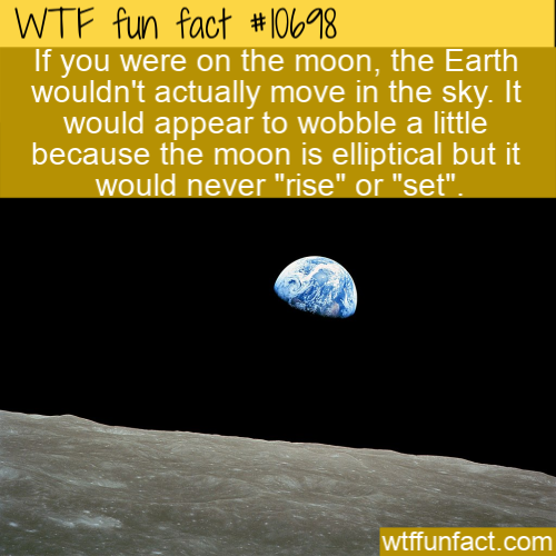 WTF Fun Fact - The Earth From The Moon