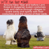 WTF Fun Fact – Kukeri Costumes