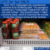 WTF Fun Fact – VW Currywurst