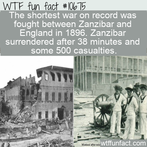 WTF Fun Fact - War or Fight