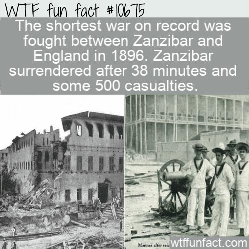WTF Fun Fact - War or Fight