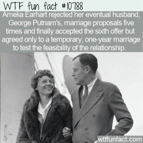 WTF Fun Fact - Amelia Earhart Marriage Proposal