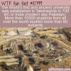 WTF Fun Fact – Takshashila