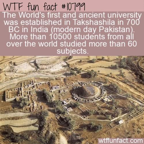 WTF Fun Fact - Ancient University