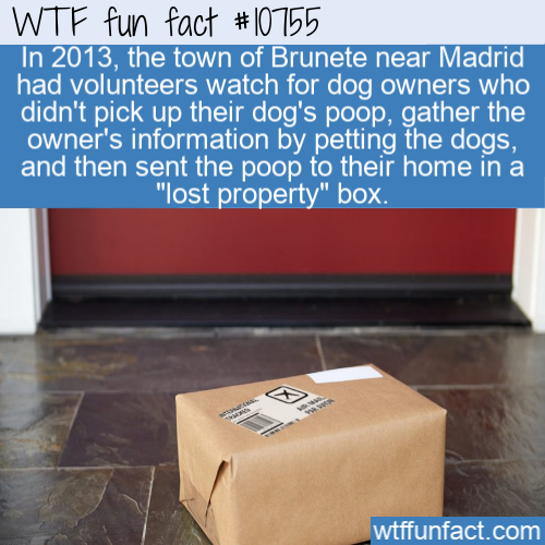 WTF Fun Fact - Dog Poop Lost & Found