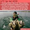 "WTF Fun Fact – Giant ""Killer"" Clam"