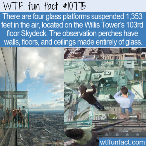 WTF Fun Fact - Highest Glass Platforms