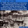 WTF Fun Fact – Honolulu And The Plague