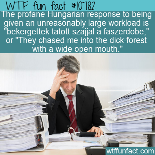 WTF Fun Fact - Hungarian Response To Too Much Work
