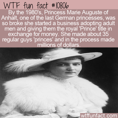 WTF Fun Fact - Broke Princess