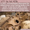 WTF Fun Fact – Oldest Known Winery