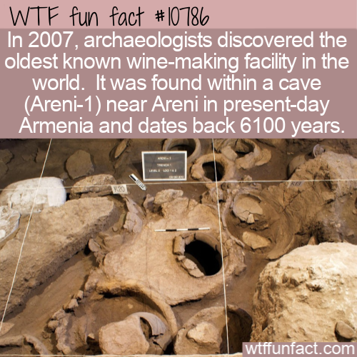 WTF Fun Fact - Oldest Wine Factory