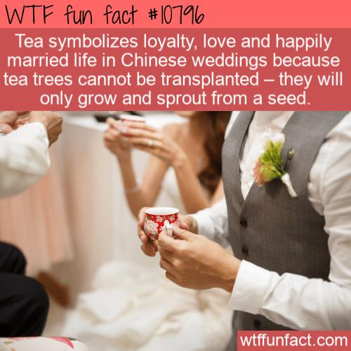 WTF Fun Fact - Wedding Tea