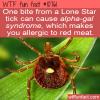 WTF Fun Fact – Lone Star Tick
