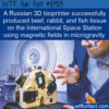 WTF Fun Fact – 3D Bioprinter In Space
