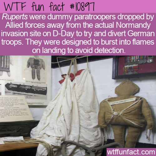 WTF Fun Fact - Exploding Ruperts