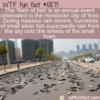 WTF Fun Fact – Rain Of Fish