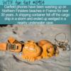 WTF Fun Fact – Garfield's Lost Phones