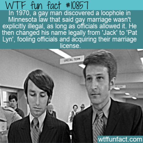 WTF Fun Fact - Gay Marriage