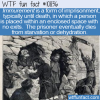 WTF Fun Fact – Immurement