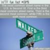 WTF Fun Fact – US Street Names