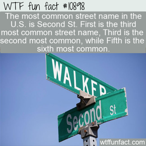 WTF Fun Fact - Most Common Street Names