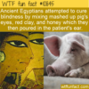 WTF Fun Fact – Unusual Blindness Remedy