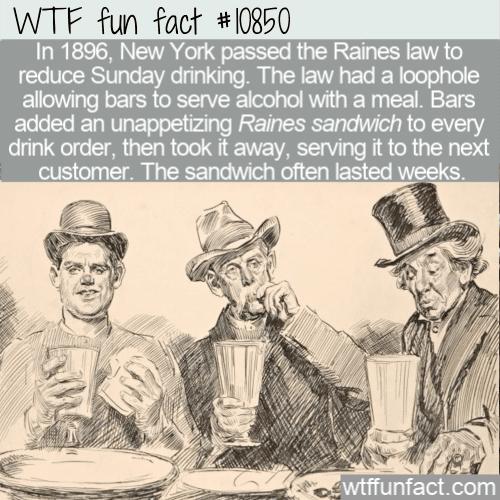 WTF Fun Fact - Raines Sandwich