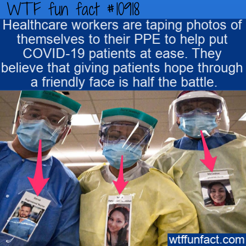 WTF Fun Fact - Tape Photo PPE