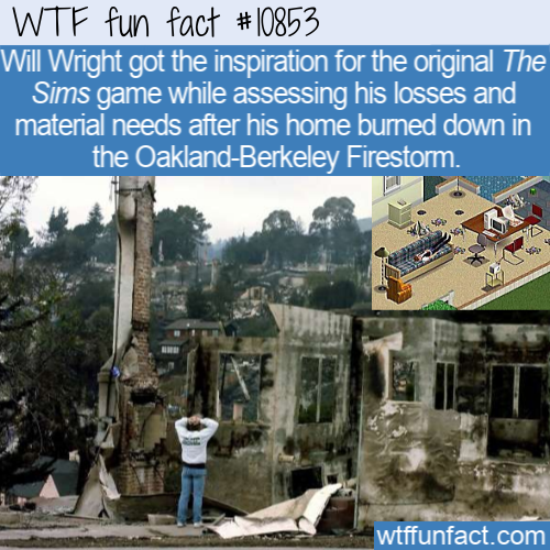 WTF Fun Fact - The Sims Inspiration