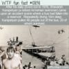 WTF Fun Fact – Shavarsh Karapetyan