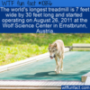 WTF Fun Fact – World's Longest Treadmill