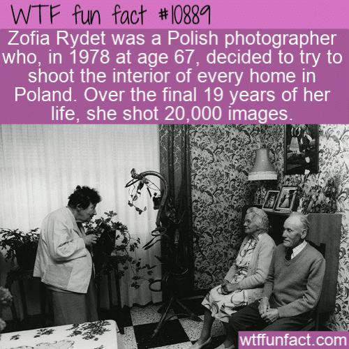 WTF Fun Fact - polish photographer zofia rydet