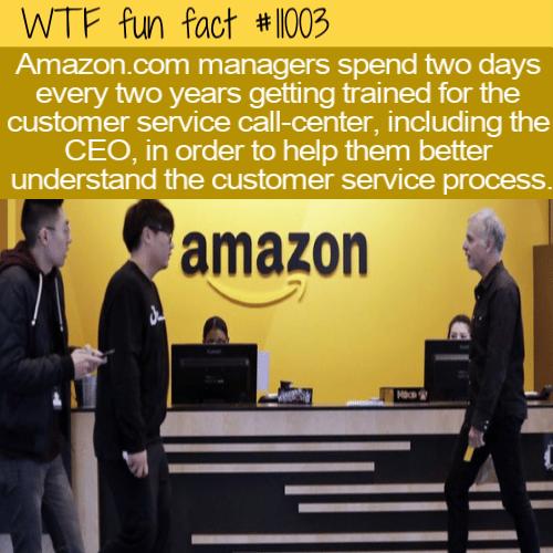 WTF Fun Fact - Amazon Always For Customers