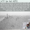 WTF Fun Fact – Artist Stephen Wiltshire