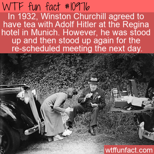 WTF Fun Fact - Churchill And Hitler Tea Party