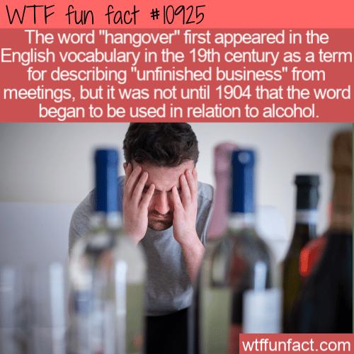 WTF Fun Fact - Hangover Origin