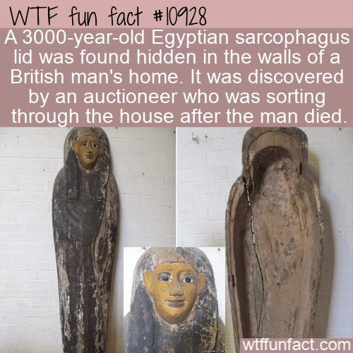 WTF Fun Fact - Hidden After Death