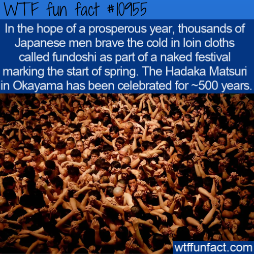 WTF Fun Fact - Naked Festival