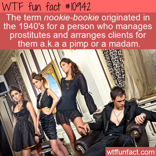 WTF Fun Fact - Nookie-bookie