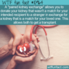 WTF Fun Fact – Paired Kidney Exchange